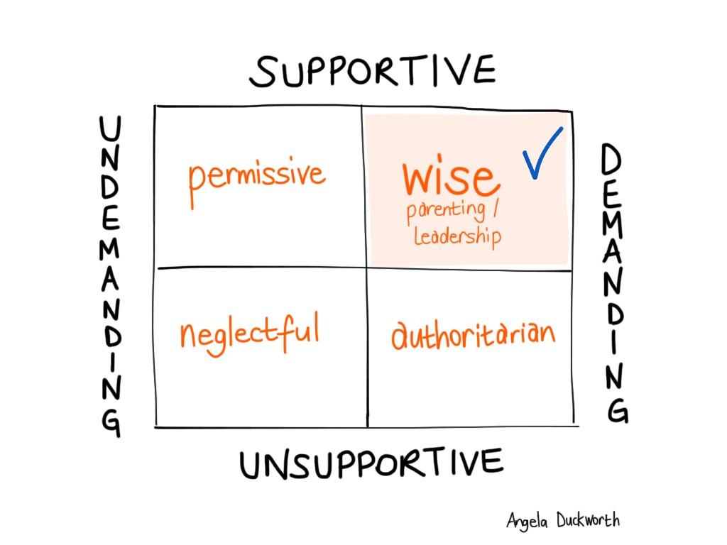 supportive v demanding matrix